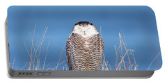 Centered Snowy Owl Portable Battery Charger