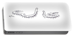 Portable Battery Charger featuring the painting Centipedes In Discussion Cartoon by Kip DeVore