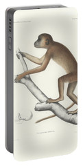 Central Yellow Baboon, Papio C. Cynocephalus Portable Battery Charger