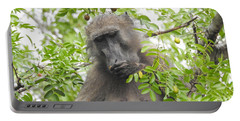 Chacma Baboon Portable Battery Charger by Betty-Anne McDonald