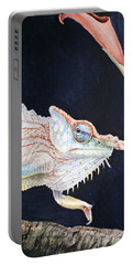 Chameleon Portable Battery Charger