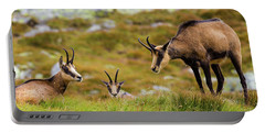 Chamois Family Portable Battery Charger