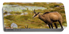 Chamois In Slovakia Portable Battery Charger