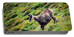 Chamois On A Sloping Hillside Portable Battery Charger