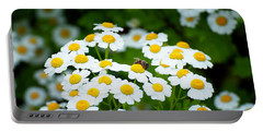 Chamomile Pollinating Portable Battery Charger
