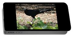 Charleston Wildlife. Black Bird Portable Battery Charger