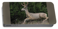 Portable Battery Charger featuring the photograph Chasing Velvet Antlers 5 by Natalie Ortiz