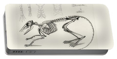 Checkered Elephant Shrew Skeleton Portable Battery Charger