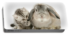 Checking For Grey Hares Portable Battery Charger