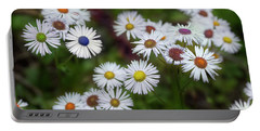 Cheerful Spring Portable Battery Charger by Mike Eingle