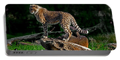 Cheetah Cub Finds Her Pride Rock Portable Battery Charger