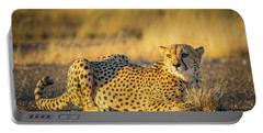 Cheetah Portrait Portable Battery Charger by Inge Johnsson