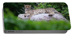 Cheetah Rests On A Rock Portable Battery Charger