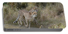 Portable Battery Charger featuring the photograph Cheetah Trot by Fraida Gutovich