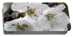 Cherry Blosoms Portable Battery Charger