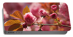 Cherry Blossoms Portable Battery Charger by Judy Palkimas