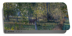 1009 - Chestnut Horse Among The Trees Portable Battery Charger