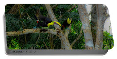 Chestnut-mandibled Toucans Portable Battery Charger