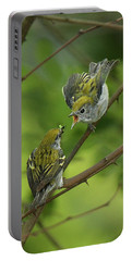 Chestnut-sided Warbler Being Fed Portable Battery Charger by Alan Lenk