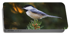 Chickadee In Spruce  Portable Battery Charger