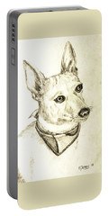 Chico Portable Battery Charger