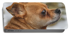 Portable Battery Charger featuring the photograph Chihuahua by Debbie Stahre