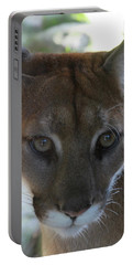 Portable Battery Charger featuring the photograph Chinook by Laddie Halupa