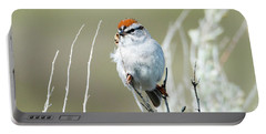 Portable Battery Charger featuring the photograph Chipping Sparrow by Mike Dawson