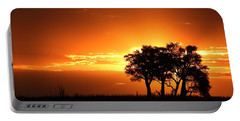 Portable Battery Charger featuring the photograph Chobe River Sunset by Betty-Anne McDonald
