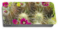 Cholla Cactus Blooms Portable Battery Charger