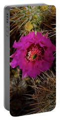 Cholla Cactus Blossom-signed-#3325 Portable Battery Charger