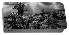 Cholla Cactus Garden Bathed In Sunlight In Black And White Portable Battery Charger