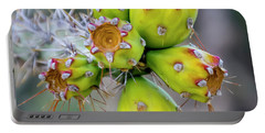 Portable Battery Charger featuring the photograph Cholla Fruit S48 by Mark Myhaver