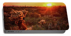Portable Battery Charger featuring the photograph Cholla Sunset In The Sonoran  by Saija Lehtonen