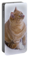 Christmas Cat Portable Battery Charger by Jacqi Elmslie