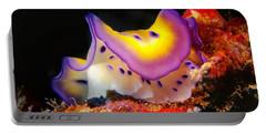 Chromodoris Kunei Nudibranch  Portable Battery Charger