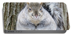 Chubby Squirrel Portable Battery Charger by Brook Burling