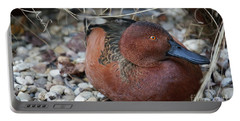 Cinnamon Teal Portable Battery Charger