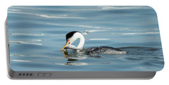 Portable Battery Charger featuring the photograph Clarks Grebe by Everet Regal