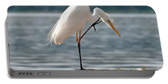 Cleaning White Egret Portable Battery Charger