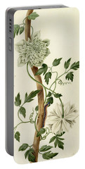 Clematis Florida With Butterfly And Caterpillar Portable Battery Charger