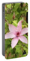 Clematis Hagley Hybrid #2 Portable Battery Charger