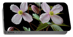 Clematis Montana Rubens Portable Battery Charger