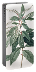 Clethra Arborea Portable Battery Charger
