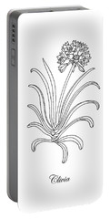 Clivia Flower Botanical Drawing Portable Battery Charger