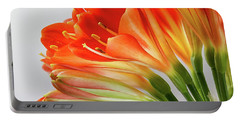 Clivia Miniata 2 Portable Battery Charger by Shirley Mitchell