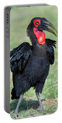 Close-up Of Ground Hornbill Bucorvidae Portable Battery Charger
