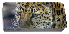 Close Up Of Leopard Portable Battery Charger
