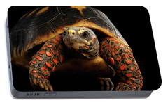 Close-up Of Red-footed Tortoises, Chelonoidis Carbonaria, Isolated Black Background Portable Battery Charger by Sergey Taran