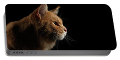 Close-up Portrait Ginger Maine Coon Cat Isolated On Black Background Portable Battery Charger